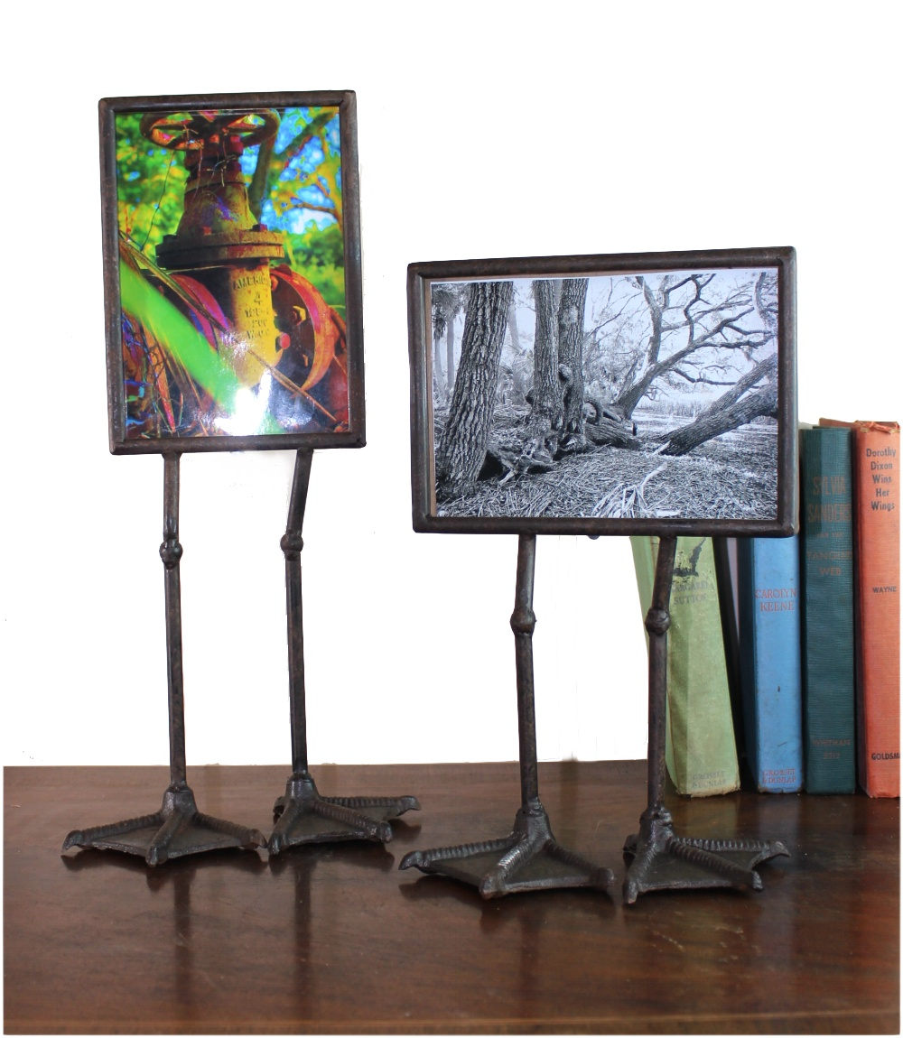 Duck or Goose Feet Standing Photo or Picture Frames (pr) Funny Cute Webbed Fowl 1