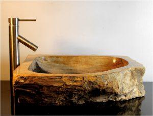Petrified Wood Basin Sink Vessel Bathroom Counter Top by The Kings Bay vw8