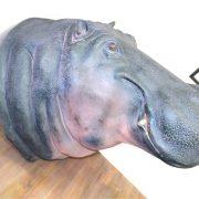 Giant Life Size Hippopotamus Hippo Head Taxidermy Wall Bust, Jungle, Safari, Sculpture