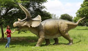 Super GIANT Triceratops Statue Life Size and more ....