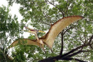 Giant Pteranodon Pterodactyl Winged Flying Dinosaur Sculpture HUGE Fun
