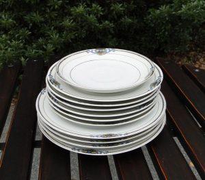 Antique 1918 Noritake Glenora Pattern #74084 China Plates, 12 Pieces China Porcelain