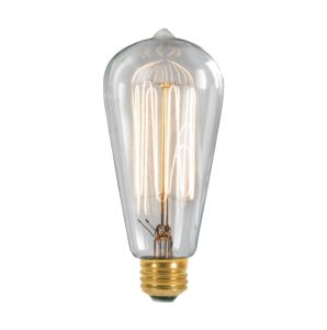 Squirrel Cage w Tip Thomas Edison LIGHT BULBS 6pcs Antique 60 watt Bulbs