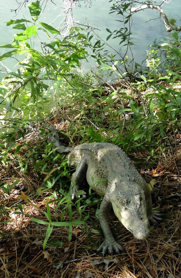 4' Long Crocodile Alligator Sculpture Graden Staue Life Size