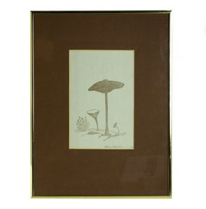 Mushroom Eames Era 70's Artwork Print Signed by Artist Listed ?