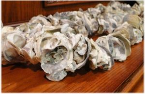 Oyster Shell Decorative Garland on String Nautical Lighting Parts Strand Craft