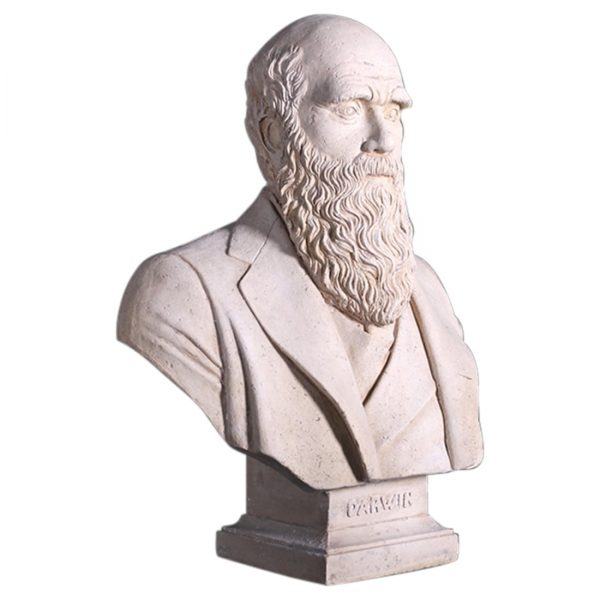 Bust of Darwin Made of Faux Stone w Marble Fnsh Vintage Looking Statue Sculpture
