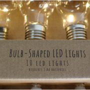String of LED Light Bulbs (10 bulbs) Ready to Hang for custom craft Battery Operated