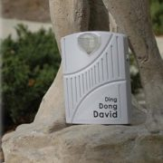 Bad Girls DING DONG DAVID Statue for College, Bar, Hooters, Bathroom, Tavern, FUNNY IDEA