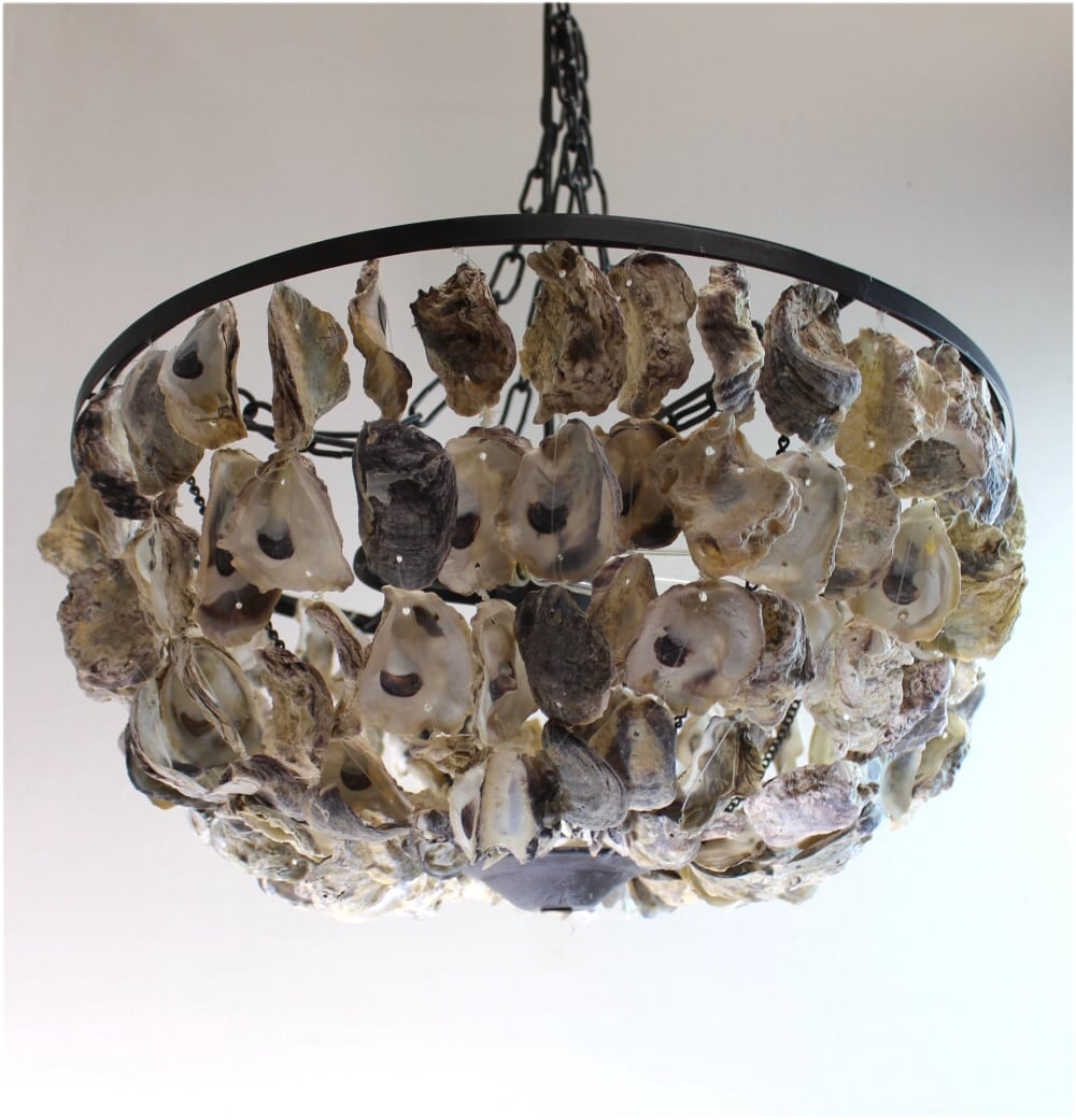 Oyster Shell Pendant Round Chandelier Hand Made Nautical Beach Home Light The Kings Bay