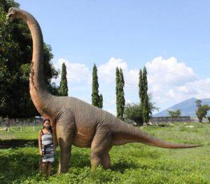 Life Size Brachiosaurus Apatosaurus Dinosaur Statue Huge Big Long Neck Museum Pc