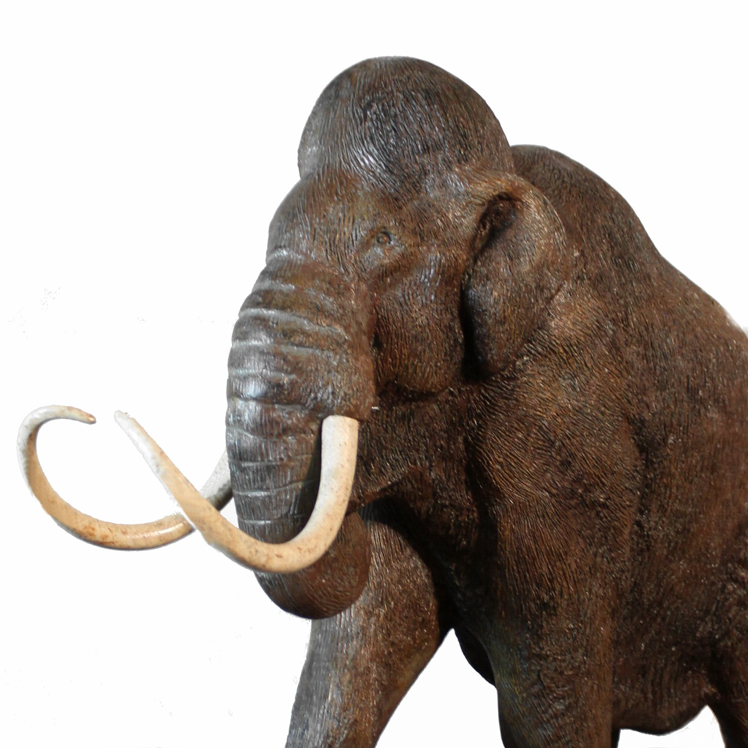 Wolly Mammoth Prehistoric Statue With Tusks Diminutive 27 Inches Long Sculpture The Kings Bay